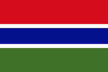 Flag of The Gambia. Vector illustration. World flag
