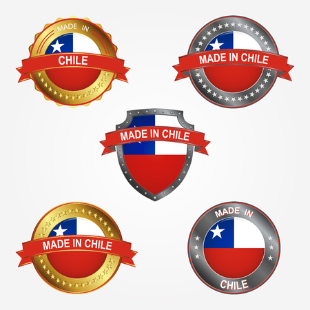 Design label of made in Chile 向量圖像