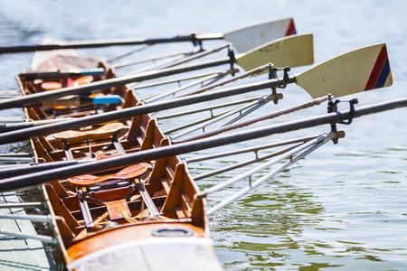 Quadruple boat on a Serbian Cup Rowing Competition Banco de Imagens