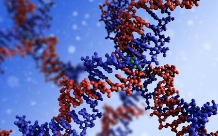 DNA, DNA close-up structure of the molecule 写真素材