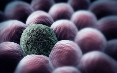 Microscopic image of cells, 3d rendering, division of cancer cell Stock Photo