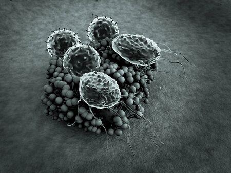 virus and macrophage, T-lymphocytes attack colony of fungi, lymphocytes and phagocytes attack colony of fungi, Human Immune System attack the fungus