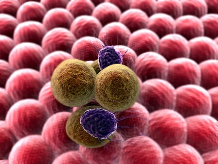 cells and virus, 3d rendered cancer cell, Clusters of cells, T-lymphocytes attack a migrating cancer cell, Cancer cell attacked by lymphocytes