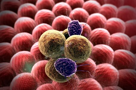 3d rendered cancer cell, Clusters of cells, T-lymphocytes attack a migrating cancer cell, Cancer cell attacked by lymphocytes