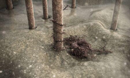 fungus and human hair, breaking hair at high magnification Фото со стока