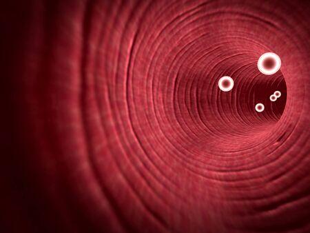 inside the blood vessel, insulin and leukocytes inside the blood vessel, white blood cells, white blood cells inside the blood vessel, Red and white blood cells in artery, Reklamní fotografie