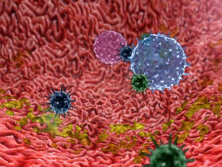 inside the human body, medical 3D graphics, lymphocyte, Lymphocytes, lymphocytes against viruses, macrophage kills the viruses inside the Stomach
