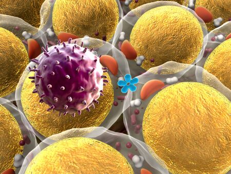 field of fat cells, High quality 3d render of fat cells, cholesterol in a cells, field of cells, mechanism of action of insulin, Human Insulin, structure of the molecule