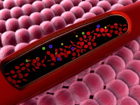 erythrocyte in the blood, inside the blood vessel, High quality 3d render of blood cells, Animation of Red Blood Cells Flowing Through Vein Stok Fotoğraf