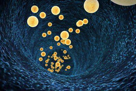 inside of the esophagus, white blood cells inside the blood vessel, High quality 3d render of blood cells Standard-Bild