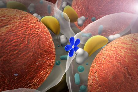insulin enters the cell, High quality 3d render of cells, field of cells