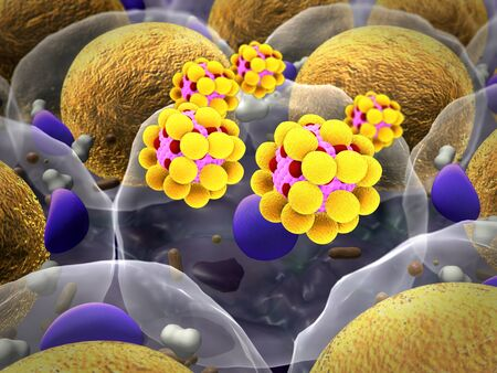 field of fat cells, High quality 3d render of fat cells, cholesterol in a cells, field of cells Reklamní fotografie