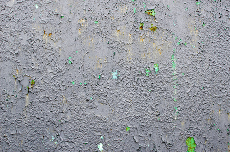 Background of the gray old metal panel with green spots.
