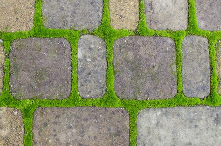 Stone wall made of square tiles and green grass seams.