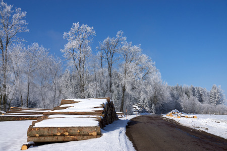 forestry: Forestry in winter, stable of round wood.