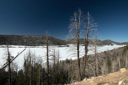 escalante: Landscape at Grand Staircase Escalante National Monument Photo taken in March.