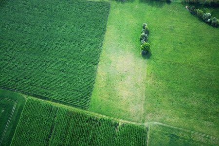 Aerial photo of Fields and meadows in Brad Castle County Germany Mid of May.
