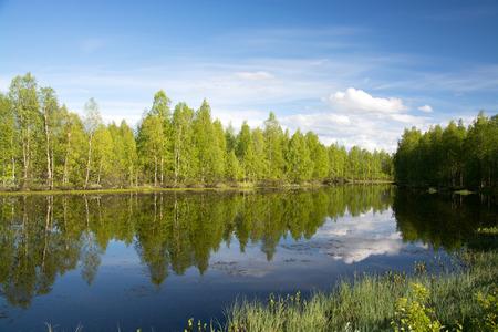 Picture of a lake in Lapland, Finland, taken in June. Foto de archivo