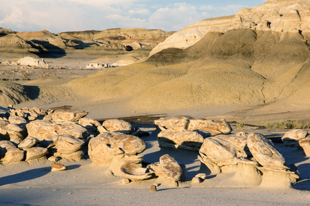 badland: The Bisti Badlands are a giant area approx. 50km south of  Farmington in New Mexico.
