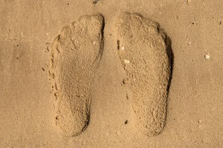 desert footprint: Footprint in the desert of the United Arab Emirates. Stock Photo