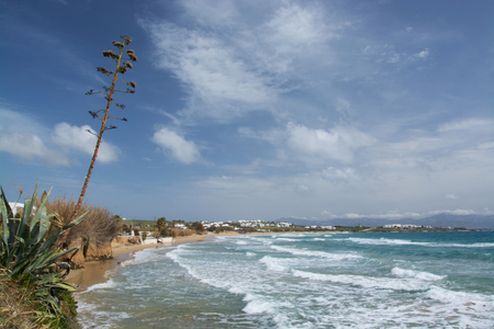 is well known: The Golden Beach is a well known beach at the island Paros, Greece..