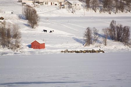 Landcsape in the region Troms in Norway in winter time. Stok Fotoğraf