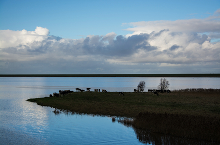 Greetsiel is a small port on the bight of Leybucht in western East Frisia, Germany.