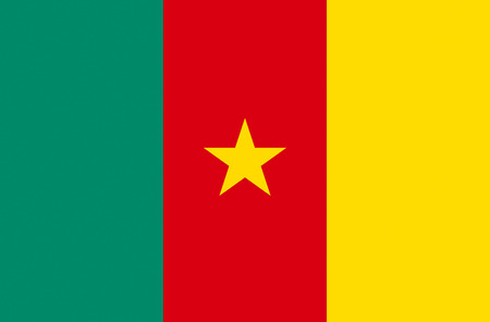 National flag of the Republic of Cameroon.
