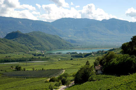 Lake Caldaro with vineyards at the South Tyrolean wine route in Italy - Italy.