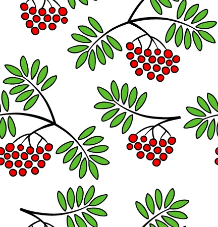 Vector pattern with branches of red rowan