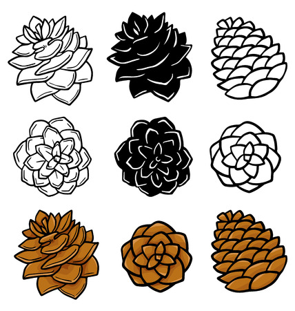 Set with pinecones isolated on white