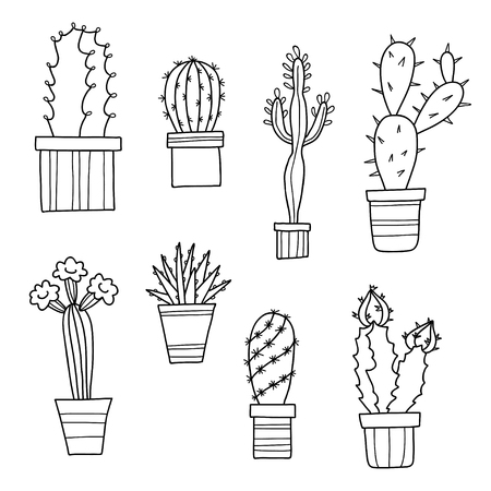 Vector lovely cartoon cacti and plants in pots, hand drawn flowers