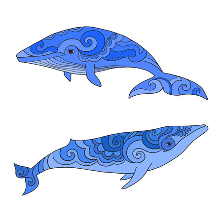 Cartoon vector sea whale.