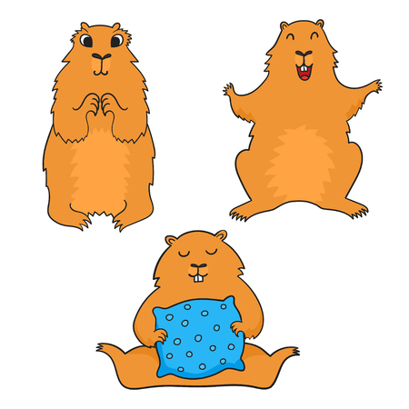 Cheerful cool cartoon groundhog.