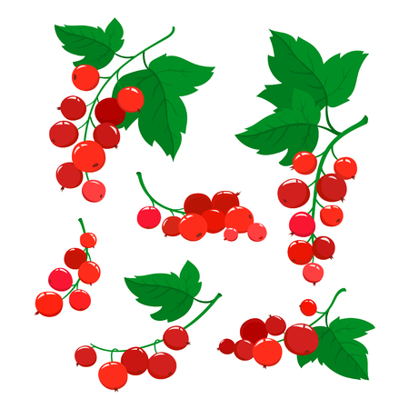 Set of cartoon red currant berries isolated on white