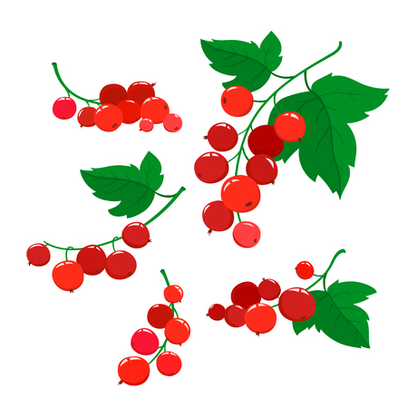 Set of cartoon red currant berries isolated on white.