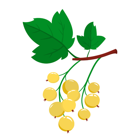 Cartoon white currant berries with green leaves isolated on white