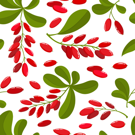 Vector seamless pattern with cartoon barberries with green leaves isolated on a white background. Bright berries branch. Cute illustration used for magazine or book, poster and card, menu cover, web pages. Illustration