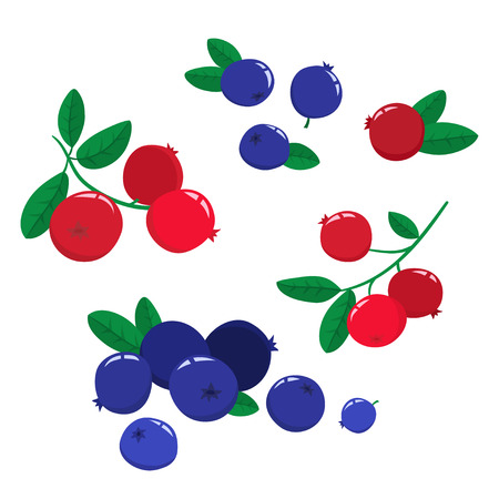 Vector set cartoon cranberries and blueberries with green leaves