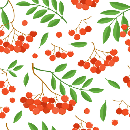 Branch of ashberries isolated on white. Seamless pattern with color mountain ashes.