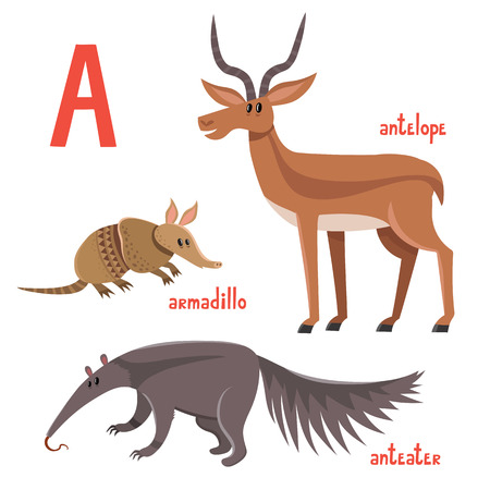 Set of wild animals in cartoon style, vector illustration of armadillo, antelope and anteater.
