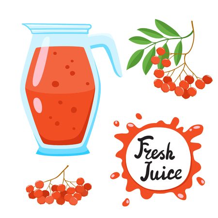 Juice with ashberry in a glass jug, vector cartoon car Illustration