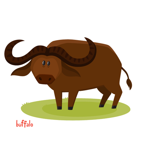 Cute buffalo bull in cartoon style. Vector illustration of wild animal isolated on white background. Cute zoo alphabet.