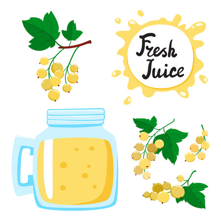 Juice with currants in a glass bank, vector cartoon card with fresh berries and smothie isolated on white. Yellow juice splashes drops.