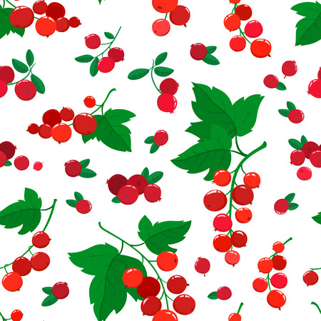 Vector seamless pattern with cartoon cranberries and currants isolated on white. Stock Photo