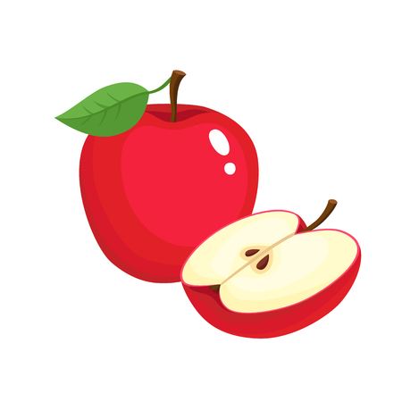 Bright vector illustration of colorful half and whole of juicy apple. Fresh cartoon apples on white background.
