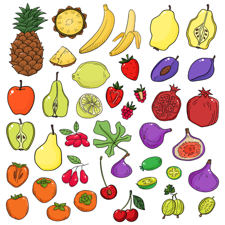 Vector set of stylized fresh cute fruits and fruit cut in half on white background. Fruits in sketch style Ilustracja