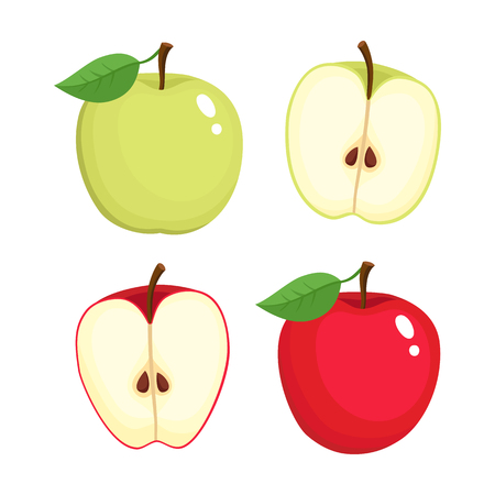 Bright vector set of colorful half and whole of juicy apple. Fresh cartoon apples on white background. Illustration