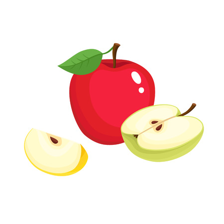 Bright vector illustration of colorful half, slice and segment of juicy apple. Fresh cartoon apples on white background.