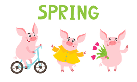 Little piggy different emotions and situations isolated on white. Vector set of cute pets in spring season used for poster, greeting card, book and banner.